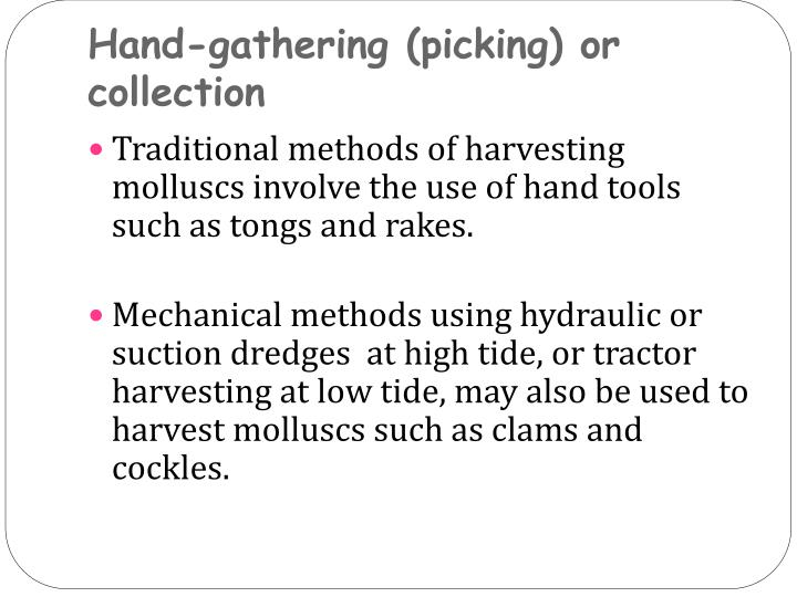 Hand-gathering (picking) or collection