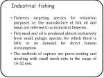 industrial fishing