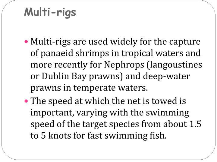 Multi-rigs