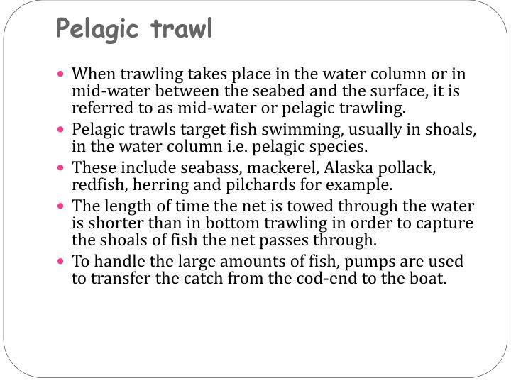 Pelagic trawl