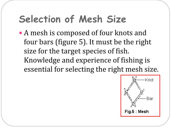 Selection of Mesh Size