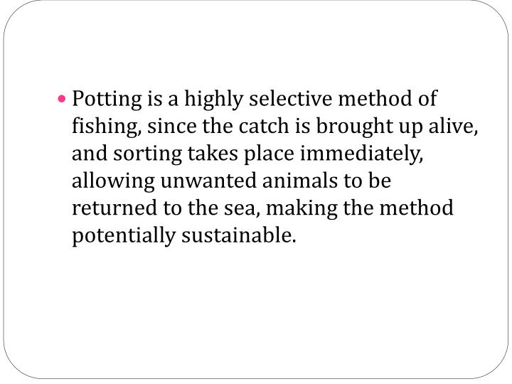 Potting is a highly selective method of fishing, since the catch is brought up alive, and sorting takes place immediately, allowing unwanted animals to be returned to the sea, making the method potentially sustainable.