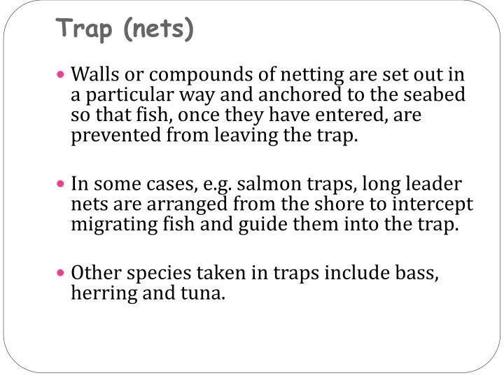 Trap (nets)