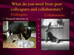 what do you need from peer colleagues and collaborators