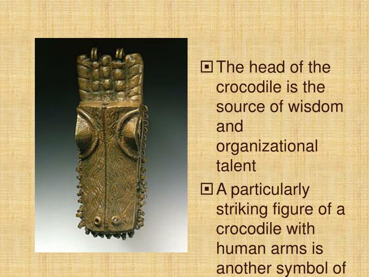 The head of the crocodile is the source of wisdom and organizational talent