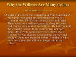 why the willows are many colors a flathead legend deseret news nov 3 2009