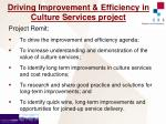 driving improvement efficiency in culture services project