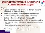 driving improvement efficiency in culture services project2