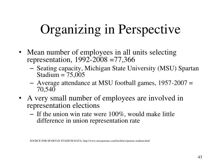 Organizing in Perspective