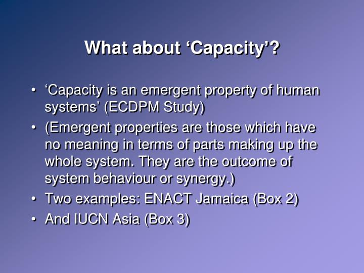 What about 'Capacity'?