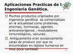 aplicaciones practicas de la ingenier a gen tica