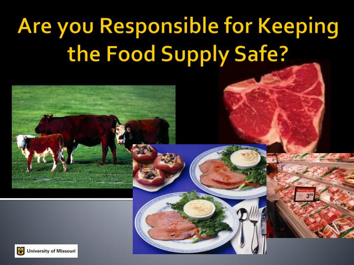 are you responsible for keeping the food supply safe n.