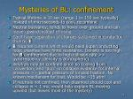 mysteries of bl confinement