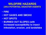 wildfire hazards aka potential disaster agents
