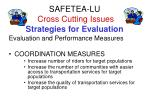 safetea lu cross cutting issues strategies for evaluation
