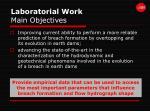 laboratorial work main objectives