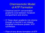 chemiosmotic model of atp formation1