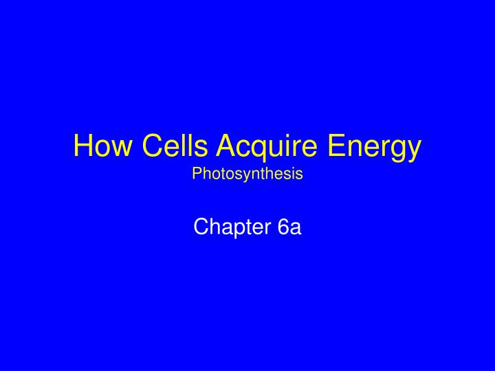 how cells acquire energy photosynthesis n.