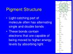 pigment structure