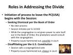 roles in addressing the divide