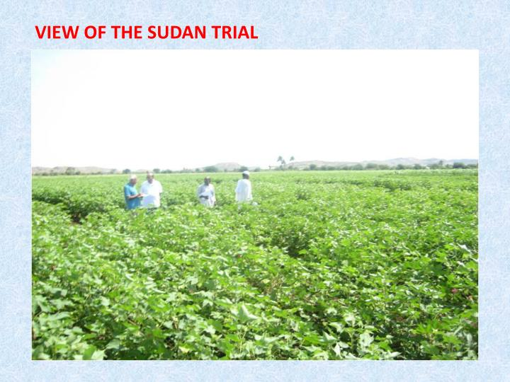 VIEW OF THE SUDAN TRIAL