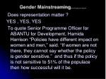 gender mainstreaming14