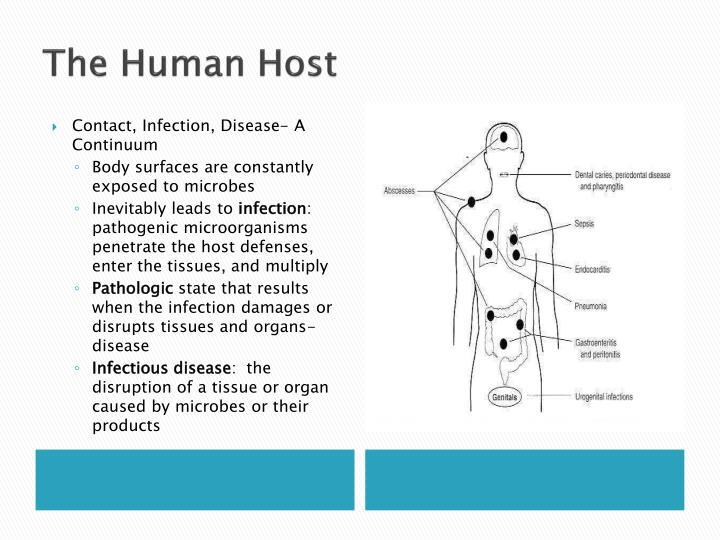 Penetration Of Host Defenses Concept Map.Ppt Epidemiology Powerpoint Presentation Id 1000554