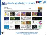 graphic visualization of networks