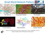 small world network patterns