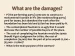 what are the damages