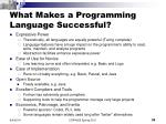 what makes a programming language successful