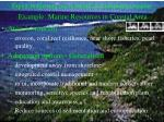 expert judgement use in identifying adaptation options example marine resources in coastal area