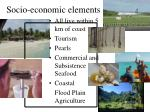 socio economic elements