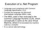 execution of a net program