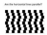 are the horizontal lines parallel