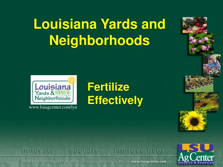 louisiana yards and neighborhoods n.