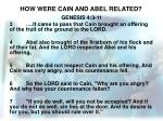 how were cain and abel related