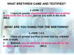 what brethren came and testified