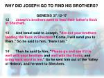 why did joseph go to find his brothers