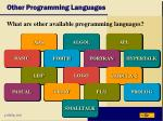 other programming languages23