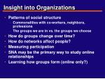 insight into organizations