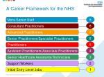 a career framework for the nhs