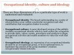 occupational identity culture and ideology