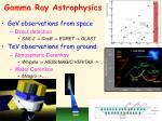 gamma ray astrophysics