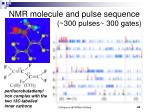 nmr molecule and pulse sequence 300 pulses 300 gates