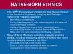native born ethnics