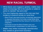 new racial turmoil4