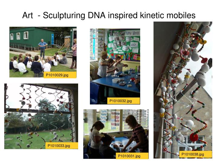 Art  - Sculpturing DNA inspired kinetic mobiles