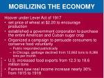 mobilizing the economy5