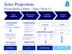 sales projections fiesta ench a lottas sales year 1